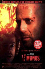 12 Monos / 12 Monkeys