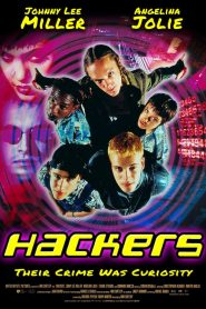 Hackers: Piratas informáticos