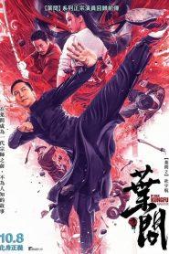 IP Man: El Maestro del Kung Fu / Ip Man: Kung Fu Master