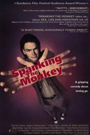 Secretos Íntimos / Spanking the Monkey