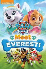 La Patrulla Canina: Conoce a Everest