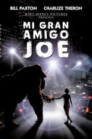 Joe: El Gran Gorila / Mi Gran Amigo Joe